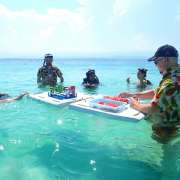 ดำน้ำชุมพร-ประจวบ 1เดย์ เรือสปีดโบ๊ทใหญ่